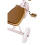 Banwood - Trike - Pink