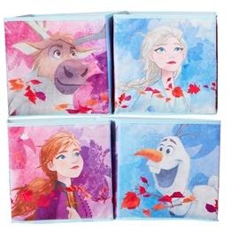 Disney Frozen 2 - Förvaringslådor