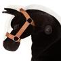 Animal Riding - Maharadscha