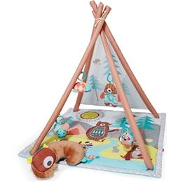 Skip Hop Camping Cubs Babygym