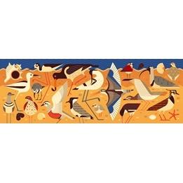 Djeco - Puzzle Gallery - Birds