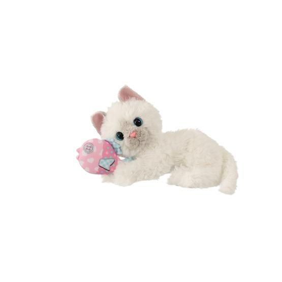 Scruffies, My Best Friend - Katt med leksak