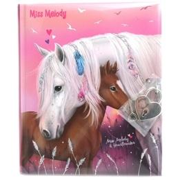 Miss Melody, Dagbok häst & föl