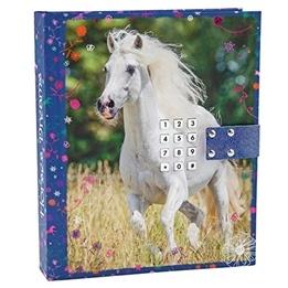 Horses Dreams, Dagbok kod & ljud blå