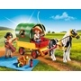 Playmobil Country 6948, Picknick med ponnyvagn