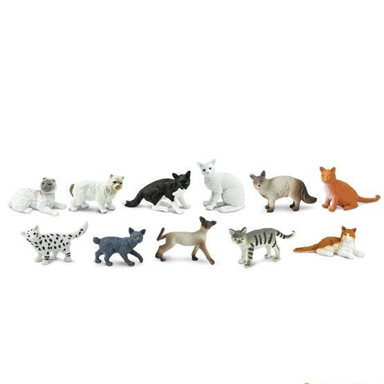 Safari, Tub Katter 11 st