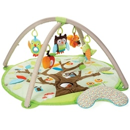 Skip Hop, Treetop Friends Babygym