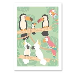 Studio Circus, Affisch - Tropiska fåglar 50x70 cm