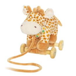 Teddykompaniet, Diinglisar Wild, Giraff på Hjul