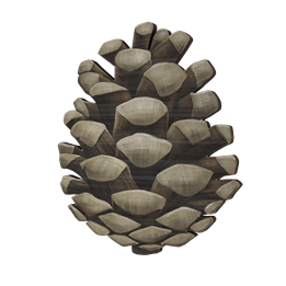VaniMeli, Woods Collection Väggkrok Tryck - Tallkotte