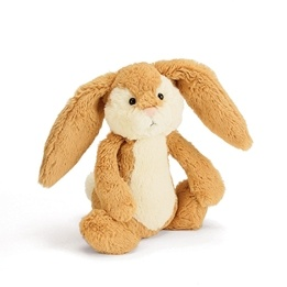 Jellycat - Bashful Wriggle Bunny