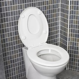Intelligent Potty - Family Seat Plast - Vit