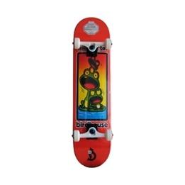 Tony Hawk - Skateboard - Tony Hawk - Birdhouse - Santos