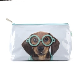 Catseye - Glasses Dog Wash Bag