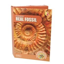 Keycraft - Fossil Dig Kit