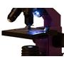 Levenhuk - Mikroskop - 2L PLUS Amethyst Microscope