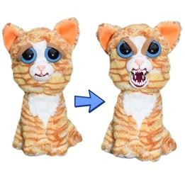 Feisty Pets - Katt Orange