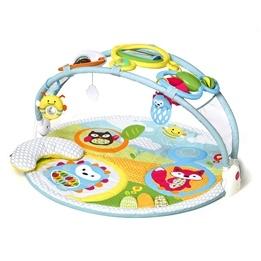 Skip Hop - Explore & More Babygym