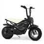 Elscooter 250W Low Rider - Svart