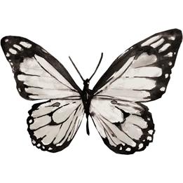 RoomMates - Väggklistermärken Butterfly Svart/Vit