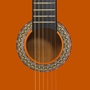 """Klassisk Gitarr 12 Delar 4/4 39"""""""
